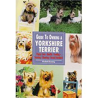 Yorkshire Terrier - Guide to Owning